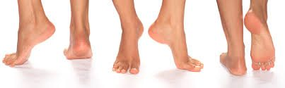 Foot function of healthy feet
