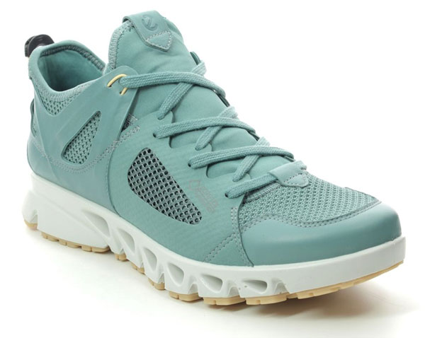 ECCO Gore Tex Shoes