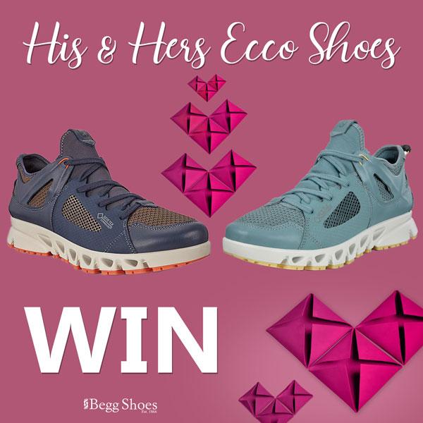 Win Ecco Shoes