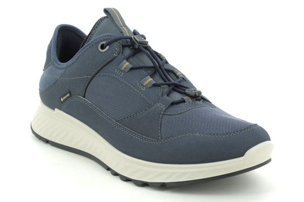 ECCO Exostride Mens Gore Tex Shoes for Back Pain