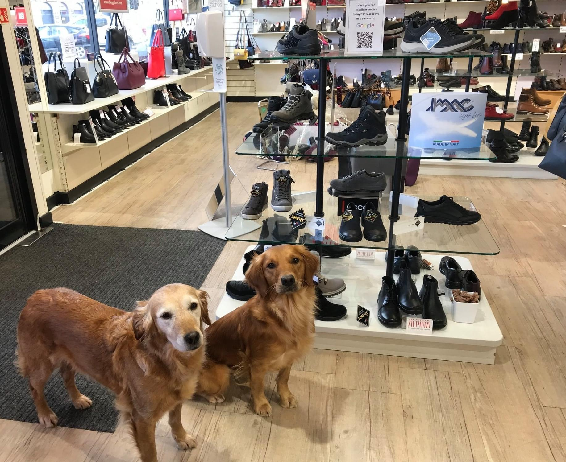 Dog Friendly Store in Inverurie