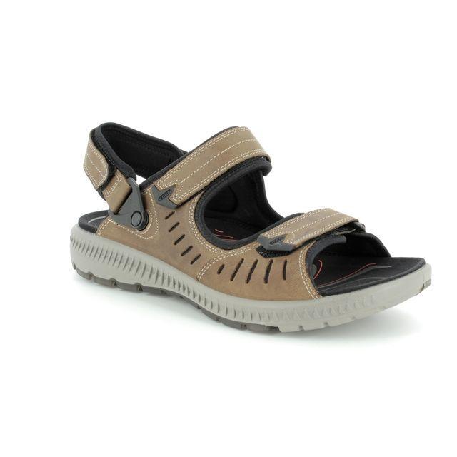 ECCO Sandals - Brown nubuck - 822704/02114 TERRA SANDAL