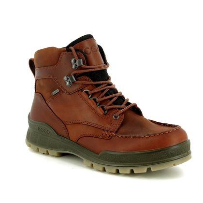 ECCO Boots - Brown multi - 831704/52699 TRACK 25 BOOT GORE-TEX